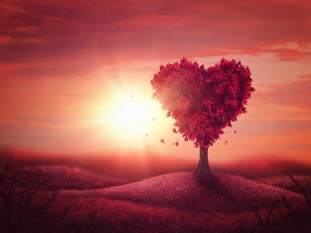 روش پرورش عشق و محبت